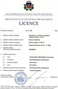 Vizuālā tēla stilista apmācības licence